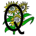 Logo Quartierverein Feld