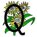 Logo Quartierverein Feld